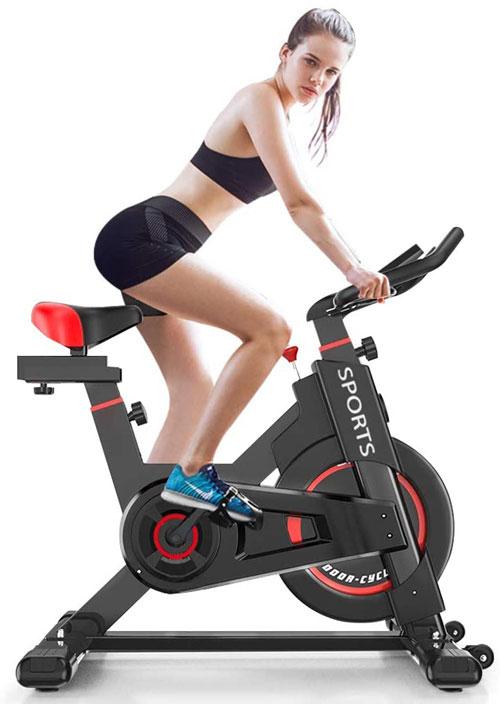 Delfy Stationary Exercise Bike